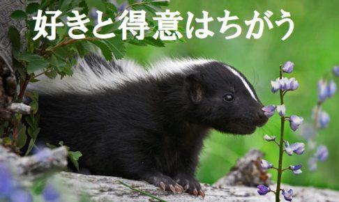 好きと得意はちがう。本田健。お金。引き寄せ。好きなこと。得意なこと。